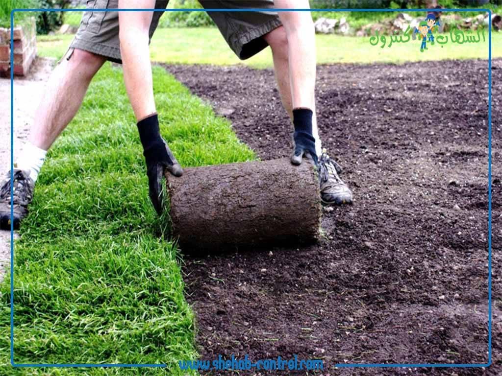 تنسيق حدائق بجدة