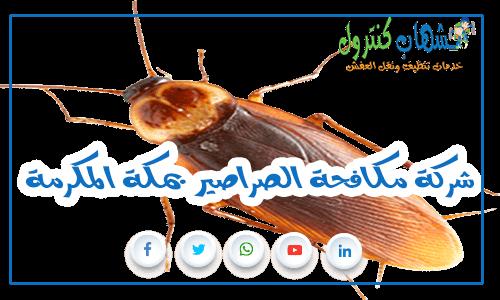 شركة مكافحة الصراصير بمكة المكرمة