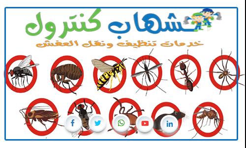 اسعار شركات مكافحة الحشرات بجدة