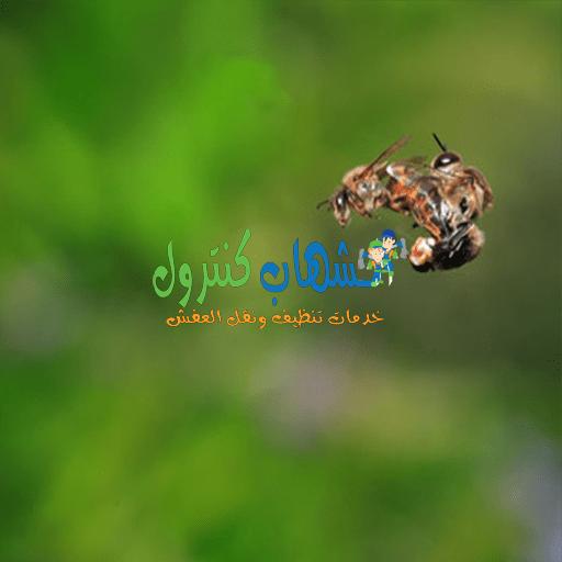 لماذا يموت ذكر النحل بعد تلقيح الملكة؟