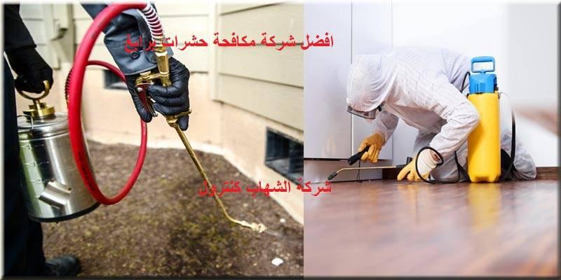 شركة مكافحة الحشرات برابغ